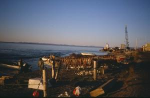 Salmon drying on racks, Front Street, Kotzebue, Alaska mid-late 1980s